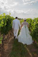 amour et vigne