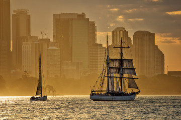 Tall ship sunset on Sydney Harbour