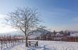 canvas print picture - Blick auf den Geilweilerhof im Winter
