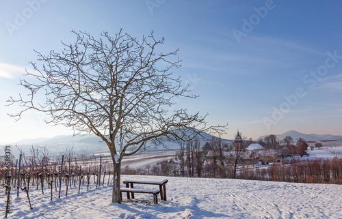 canvas print picture Blick auf den Geilweilerhof im Winter