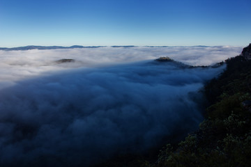 Cloud-filled valley in the Blue Mountains, Australia