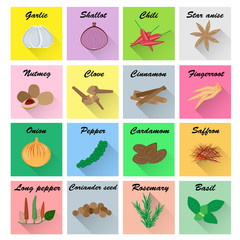Spices vector set