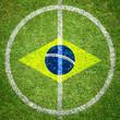 Brasilien Rasen von oben