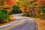 Winding road curves through autumn trees in New England poster