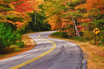 Winding road curves through autumn trees in New England