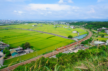 train passing through green rice field