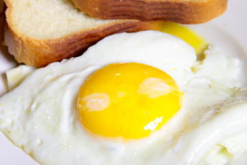 wheat bread and fried eggs as part is morning meal