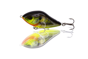 Fishing lure coloring sunfish