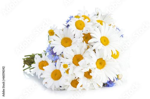 In de dag Water planten beautiful bouquet of daisies in vase
