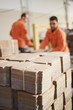 Cardboard packaging production - 66600917