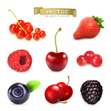 Fototapety Sweet berries, vector illustration set of high quality