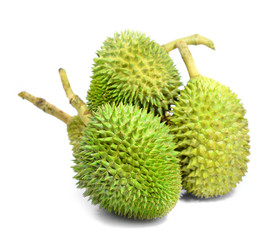 Durian King of fruit Thailand