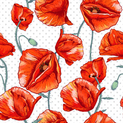 Seamless floral background with red poppy