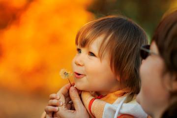 Beautiful child blowing away dandelion flower