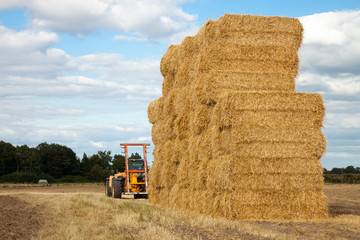 Piling hay bales on a summers day