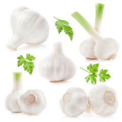 Collections of Garlic isolated on white background