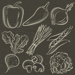 set of vegetable, pepper,onions, beans, vector illustration