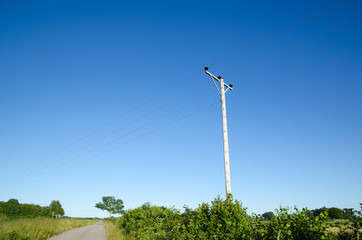 Pole with powerlines at blue sky