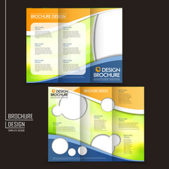 vector tri-fold business brochure layout design template
