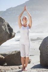 Blonde woman standing in tree pose on a rock
