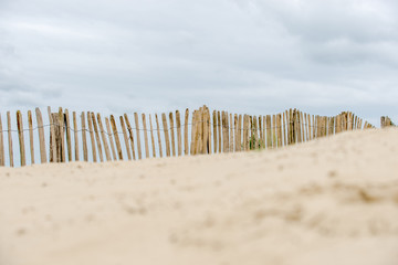 Dune fence on the beach
