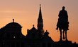 Brussels - Silhouette of king Albert statue and town hall