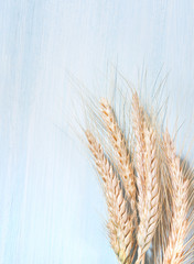 Wheat ears on a wooden background.