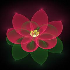 Fractal - flower