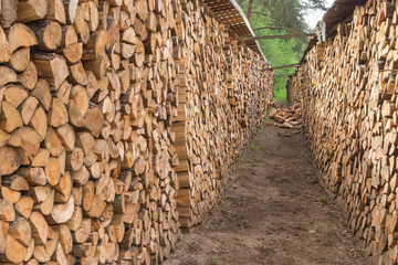 Firewood stacked in a row in the garden