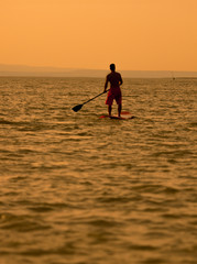stand-up-paddler at sunset