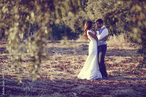 Just married couple in nature background - 66622503