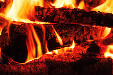 Fireplace with birch firewood and flame.