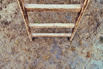 Wooden ladders in the muddy dirt