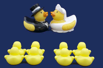 Rubber Ducks Bride and Groom Wedding Ceremony