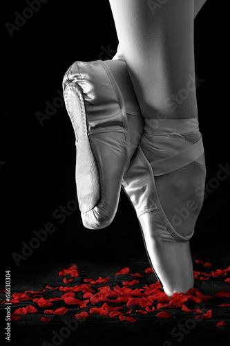 baletniczego-tancerza-pozycja-na-palec-u-nogi-na-rozanych-platkach-z-czarnym-backg