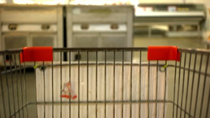 Customer shopping at supermarket with trolley