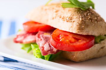 Salami sandwich with tomato and arugula on plate