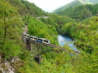 Palagnedra lake and the railway bridge