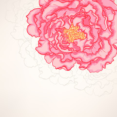 background with pink peony