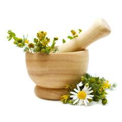 Chamomile and tutsan (Saint-John's-wort), medicine herbs