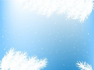 white fir branches frame on blue snowflake background