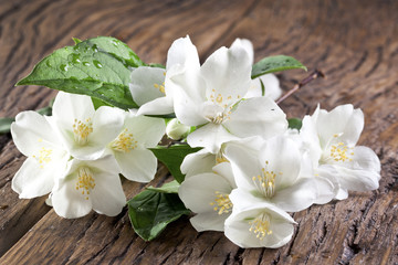 Jasmine flowers over old wooden table.