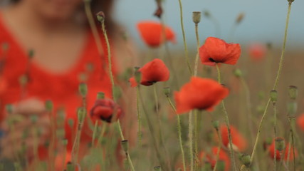 Red dressed young beautiful girl in poppy field in Crimea