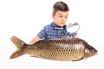 Boy examining a fish with magnifying glass
