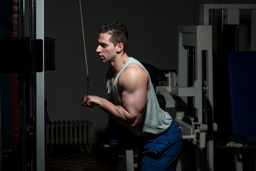 Young Man Exercising Triceps In Healthy Club