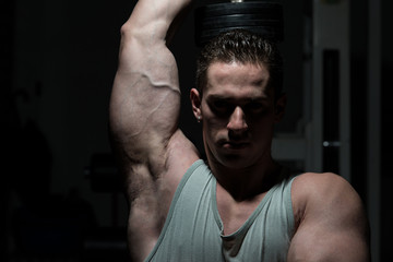 Man In The Gym Exercising Triceps With Dumbbell
