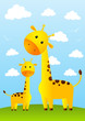 Funny giraffes on meadow background