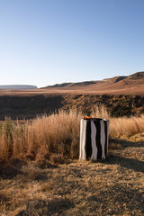 Trash Bin Disguised with Zebra Markings at Roadside
