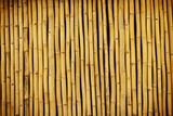 Bambuswand 01
