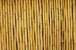 Bambuswand 02